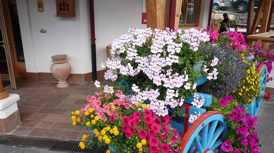 Colorful cart with many flowers